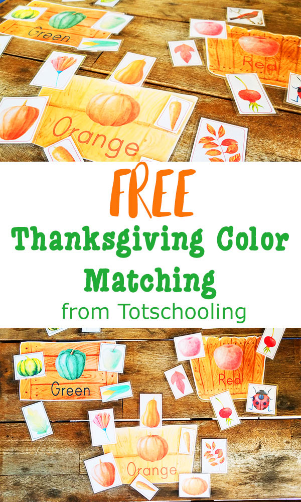 FREE printable color matching activity for toddlers, perfect for the Fall and Thanksgiving. Featuring beautiful images of nature, fruits and vegetables, this activity is sure to be a hit with young preschoolers.