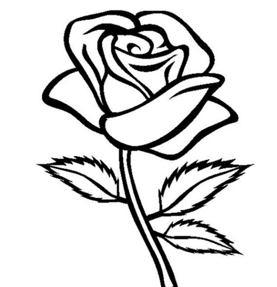 Mewarnai Gambar Bunga Mawar Untuk Anak Mewarnai Gambar