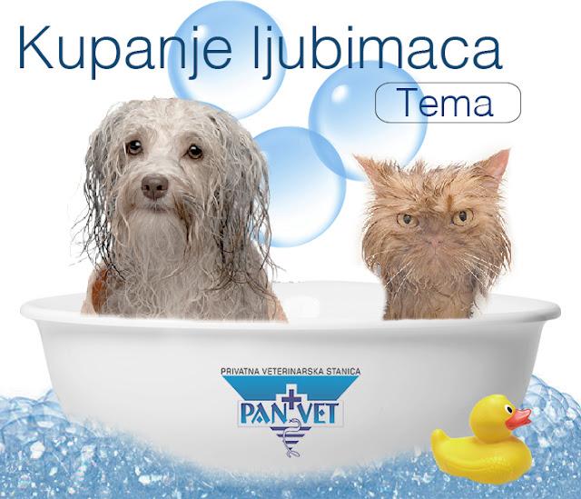 Kupanje ljubimaca - Panvet blog