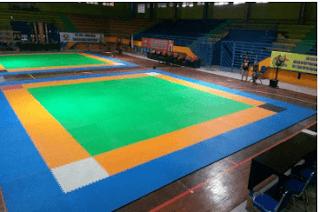 Gambar dan Ukuran Lapangan Arena Tarung Derajat