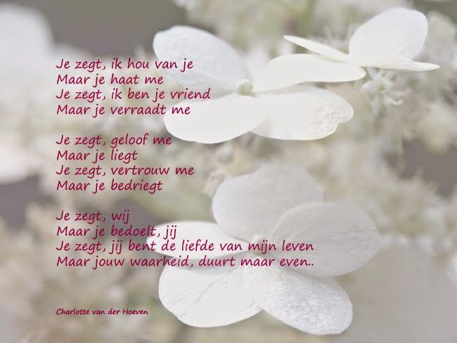 Uitzonderlijk Blog Narcismevrij.nl: april 2015 @ME97