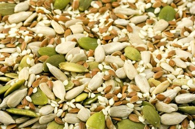 Healthiest Seeds you must add to your diet