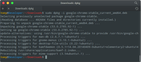 Run install chrome in linux