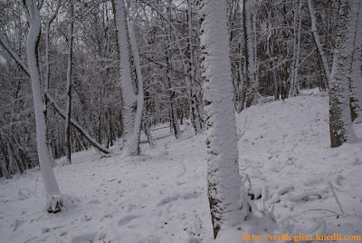 tél hó