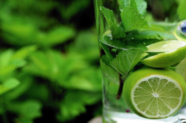 Benefit of mint leaves