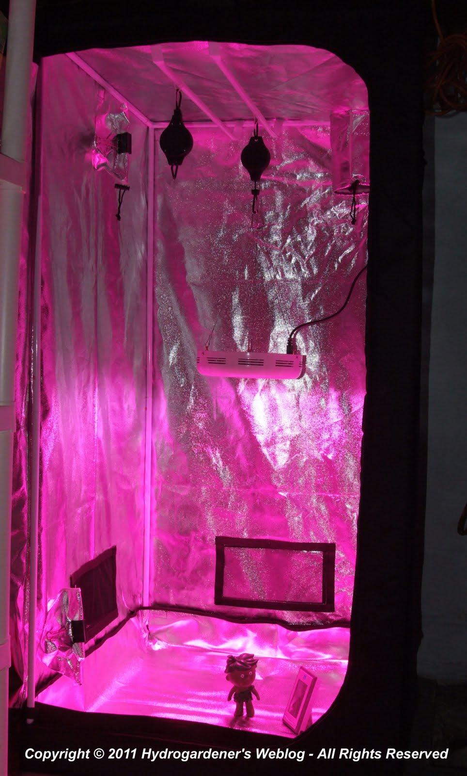 Led Grow Tent Setup Amp View Larger Autoflower Thai Fantasy