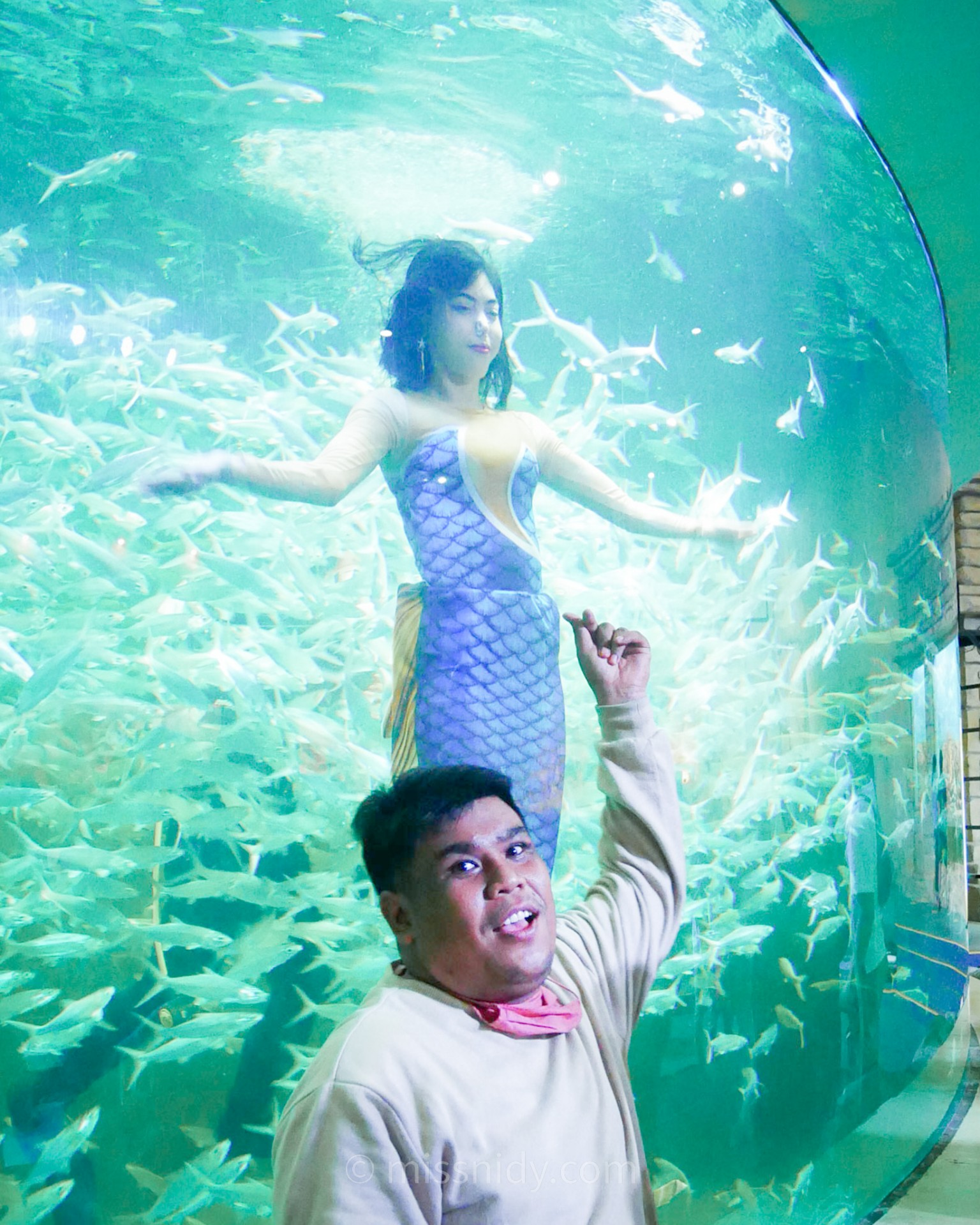 pertunjukan mermaid show di ancol