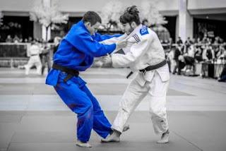 judo corner drop