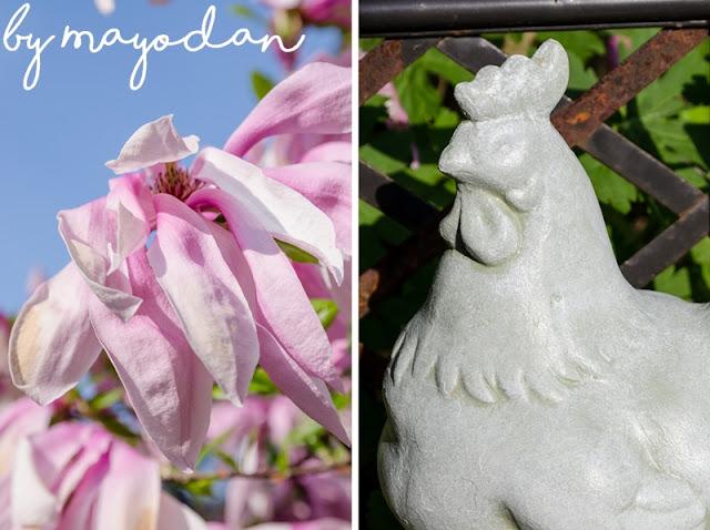 Magnolie Gartenfigur Hahn
