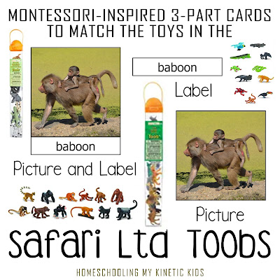 Montessori-inspired 3-part matching cards for all Safari Ltd Toobs