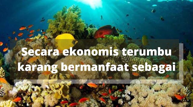 Secara ekonomis terumbu karang bermanfaat sebagai