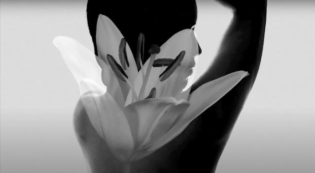 screenshot from Mia Funk's In My Dreams