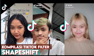 Shapeshifting filter tiktok | Cara melihat anda mirip artis siapa dengan menggunakan shapeshifting filter on tiktok
