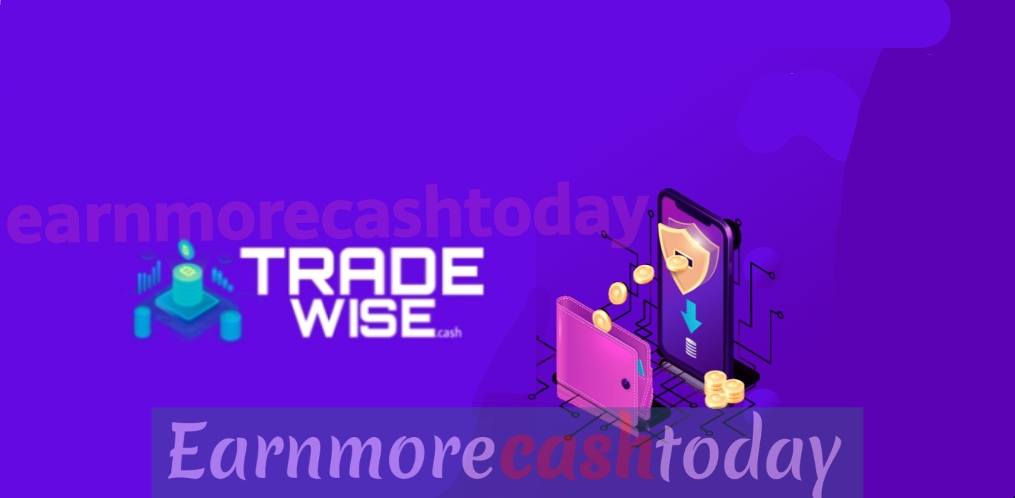 Tradewise.cash review