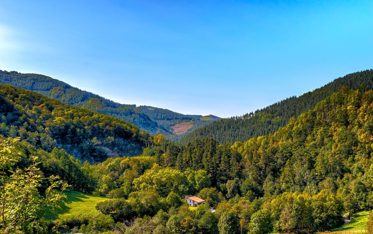 www.alsace-destination-tourisme.com