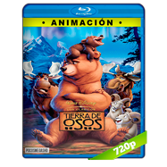 Tierra de osos (2003) BRRip 720p Latino