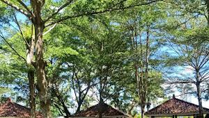 Taman Kota Kabupaten Lombok Barat, Kumuh dan tidak terawat
