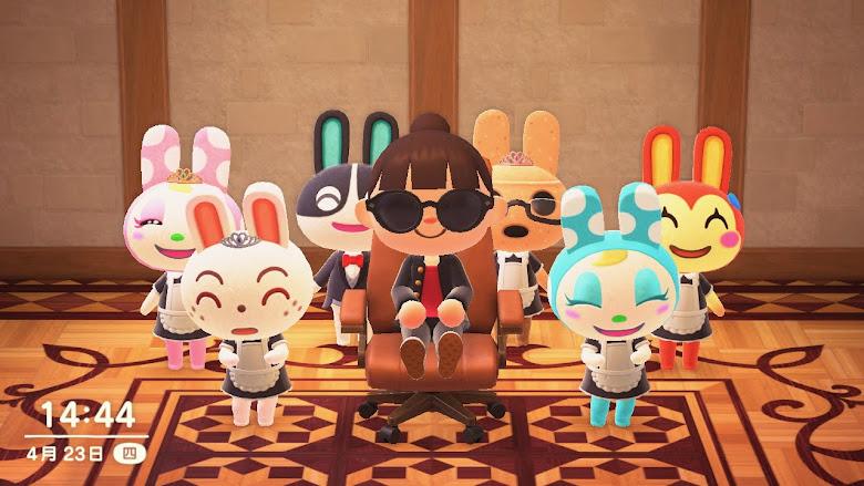 夢想中的兔子居民
