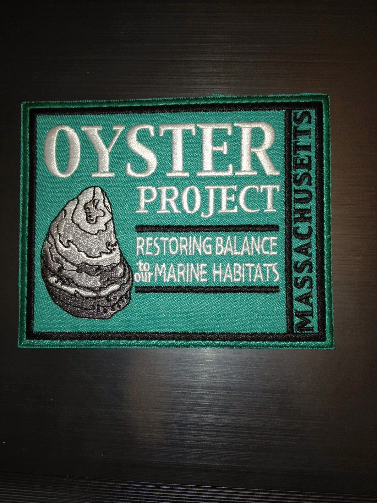 Oyster Restoration Patch