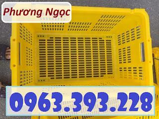 Sọt nhựa công nghiệp, sọt thanh long, sọt nhựa rỗng HS011 có quai sắt Sot-nhua-rong-thanh-long-hs011-gia-tot-1555484658