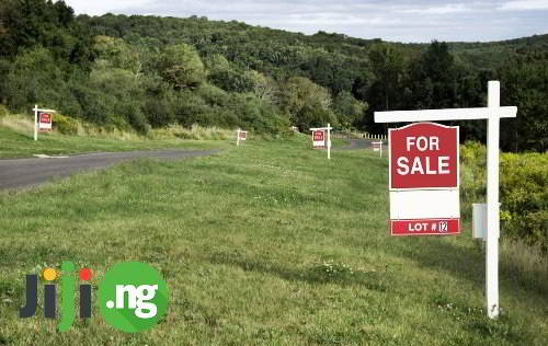 What do You Need to Know Before Buying a Plot of Land?