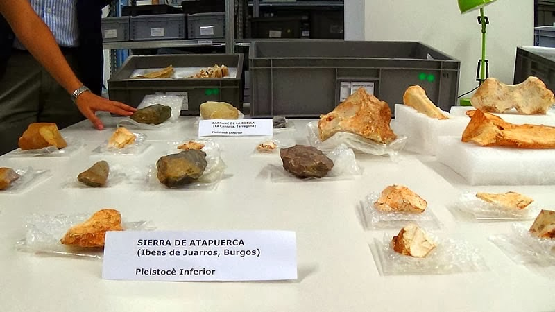 Restos encontrados en la Sierra de Atapuerca