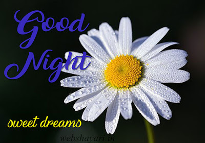 good night ke photo download kare