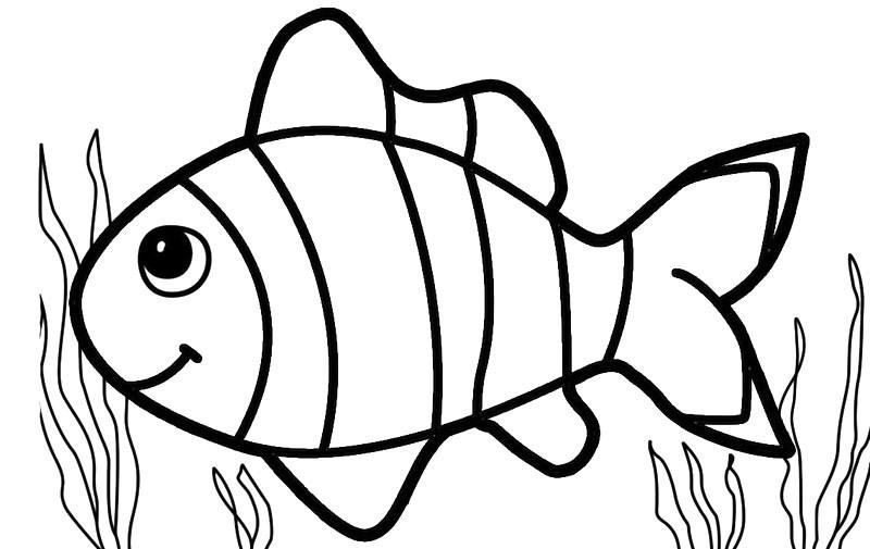 Gambar Mewarnai Ikan Hias