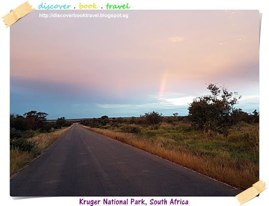 Kruger National Park Safari Day 5