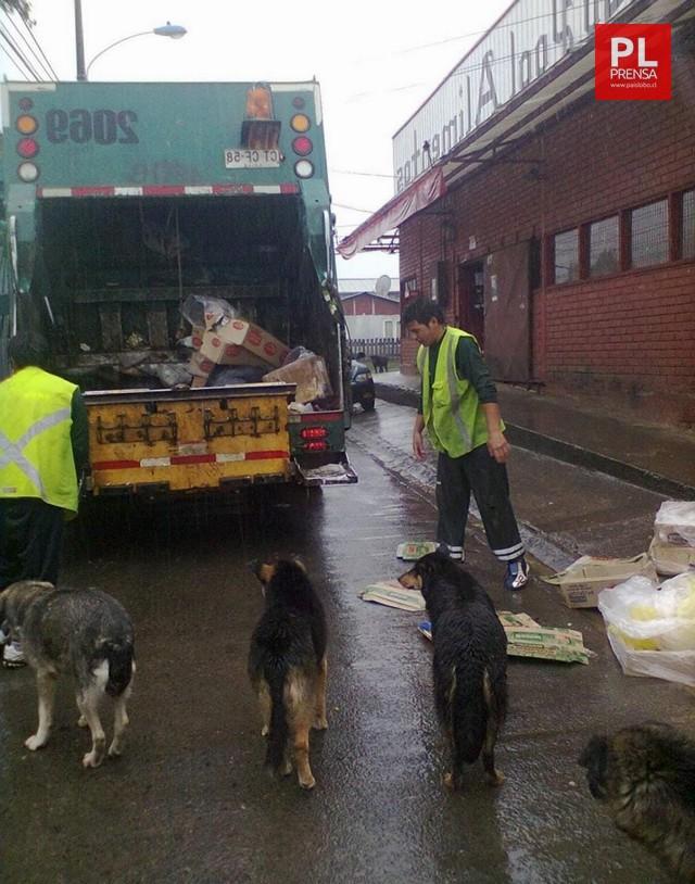 Día del Recolector de basura