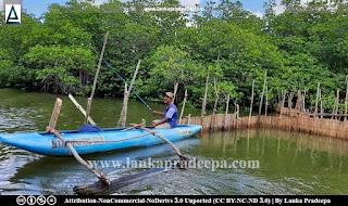 Maduganga Estuary