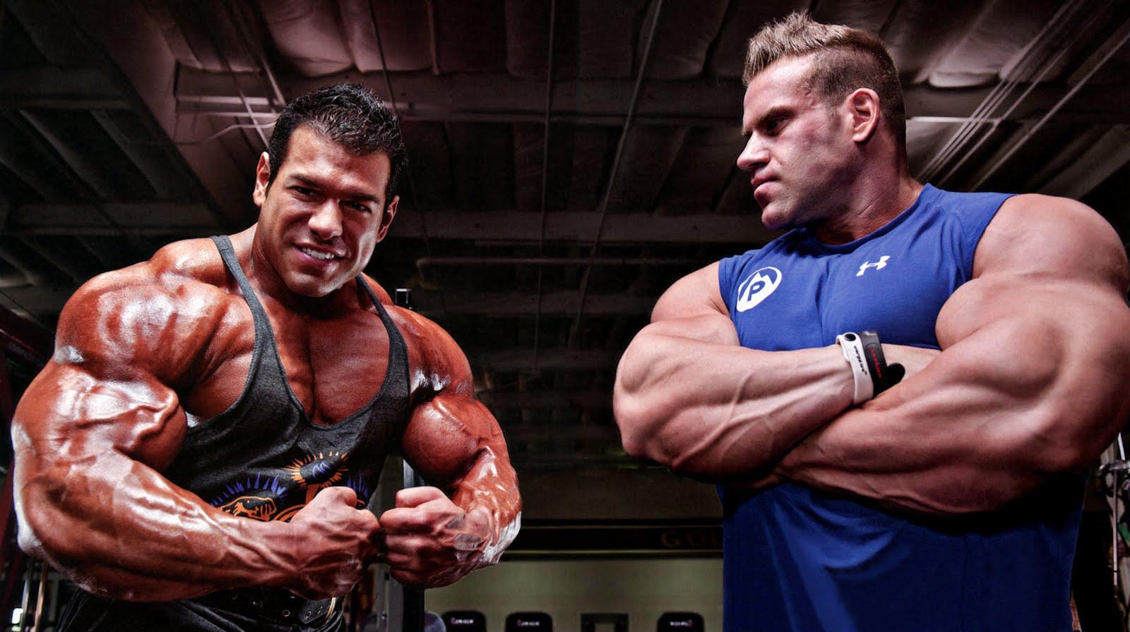 What are Steve Kuclo's plans? - Bodybuilding com Forums