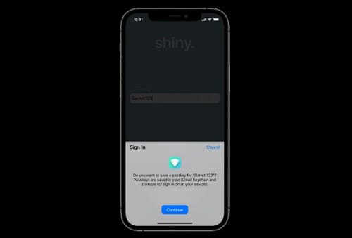 Apple's small step into a passwordless future