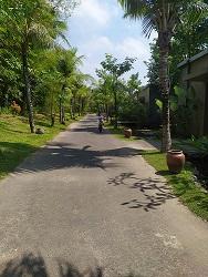 Jalan di the westlake resort