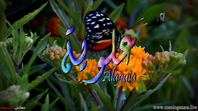 معنى اسم علوية وصفات حاملة هذا الاسم Alawiyah
