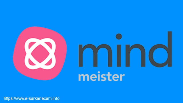 MindMeister Mind Mapping Software