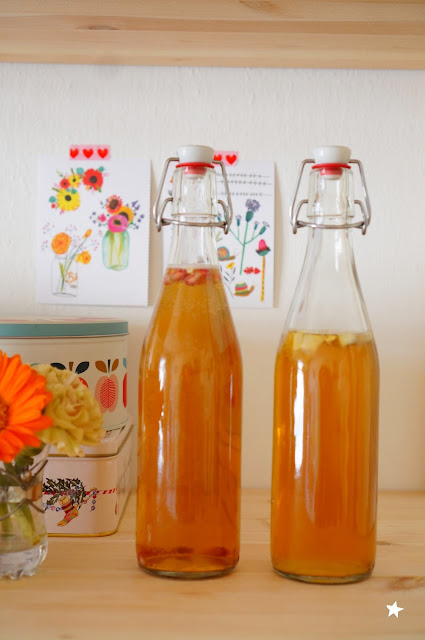 kombucha fermentation healthy probiotics