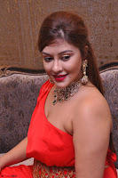 Payal Ghosh Looks Stunning in Red Half Shoulder Gown 005.JPG