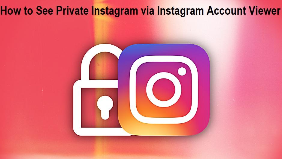Instagram Account Viewer