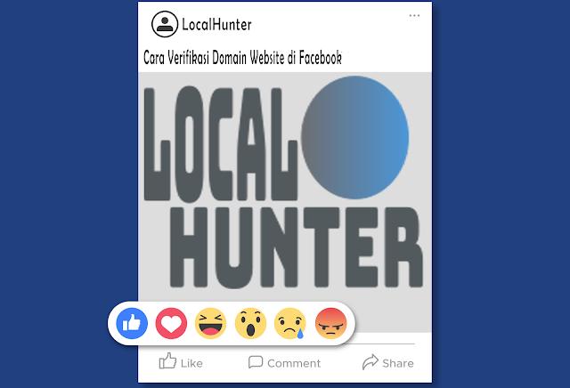 Verification-Domain-Facebook-Business-LocalHunter
