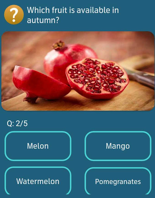 Which fruit is available in autumn?