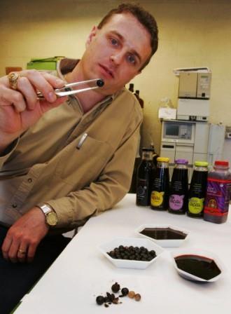 Pendapat Ahli Mengenai Acai Berry