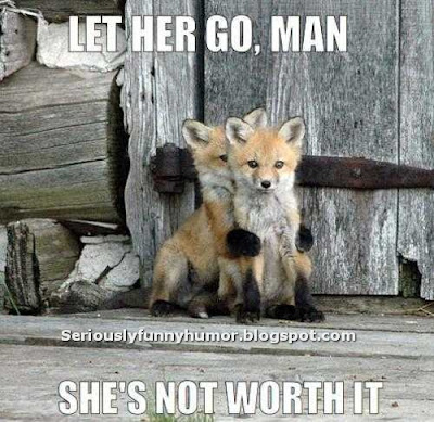 Fox consoling fox - Let her go, man. She's not worth it :p
