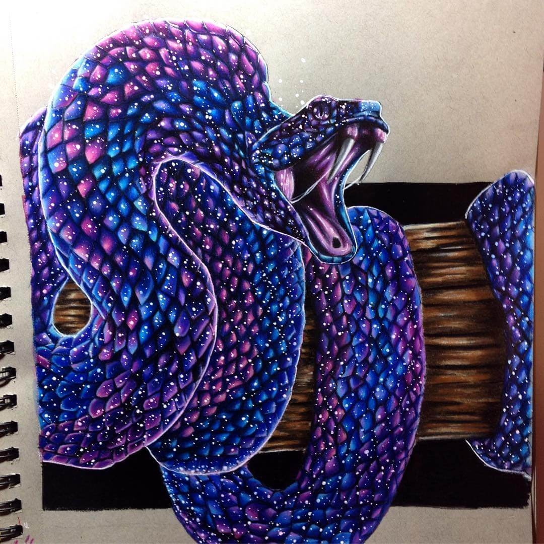 01-Coiled-Snake-Estefani-Barbosa-Fantasy-Animals-in-Pencil-Drawings-www-designstack-co