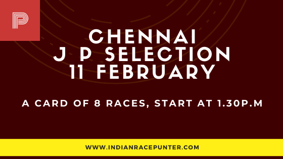 Chennai Jackpot Selections 11 February