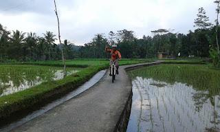 Bersepeda di Ubud