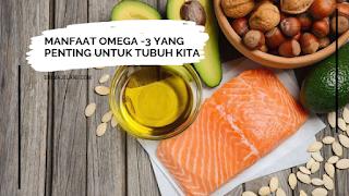 Manfaat Omega - 3 Yang Penting Untuk Tubuh Badan Kita