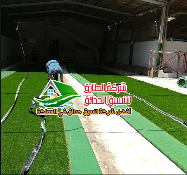 شركة تركيب عشب جدارى بالباحة أفضل ثيل جداري بالباحة أفضل عشب صناعي بالباحة