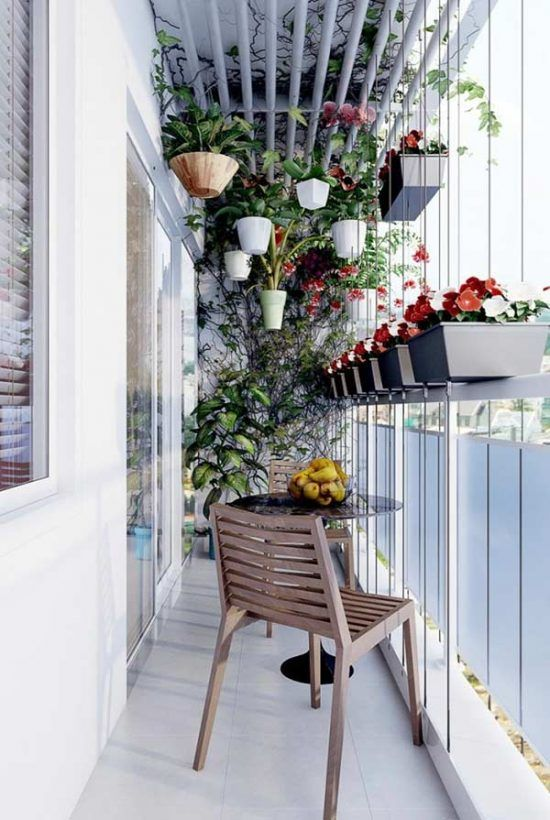 Plants bring more privacy to the balcony