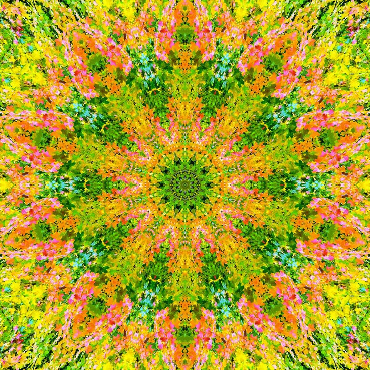 Kaleidoscope photo art by Jeanne Selep